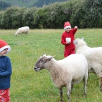 children-with-sheep