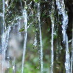 water-trickling